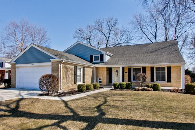 1643 S Chesterfield Drive, Arlington Heights, IL 60005 (MLS #09887135) :: The Schwabe Group