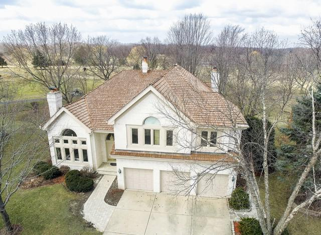 1262 N Wellington Drive, Palatine, IL 60067 (MLS #09887226) :: The Schwabe Group