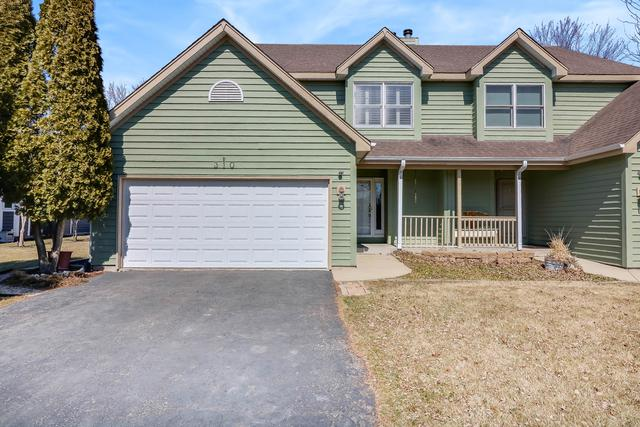 310 Amie Avenue, Hinckley, IL 60520 (MLS #09887252) :: The Jacobs Group