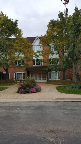 207 Rivershire Lane #306, Lincolnshire, IL 60069 (MLS #09887265) :: The Schwabe Group