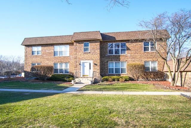 18519 Harwood Avenue 1A, Homewood, IL 60430 (MLS #09887407) :: Littlefield Group