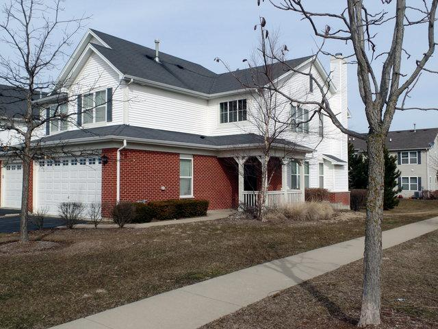 391 Mcgrath Drive #391, Oswego, IL 60543 (MLS #09887526) :: Angie Faron with RE/MAX Ultimate Professionals
