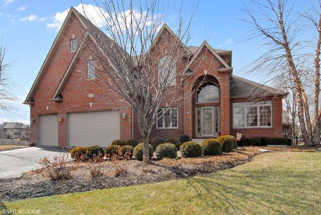 12729 Grande Pines Boulevard, Plainfield, IL 60585 (MLS #09887620) :: Angie Faron with RE/MAX Ultimate Professionals