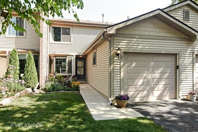 382 E Forest Knoll Drive, Palatine, IL 60074 (MLS #09887682) :: The Schwabe Group