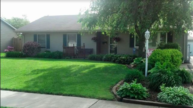 855 Notre Dame Drive, Matteson, IL 60443 (MLS #09887695) :: Domain Realty