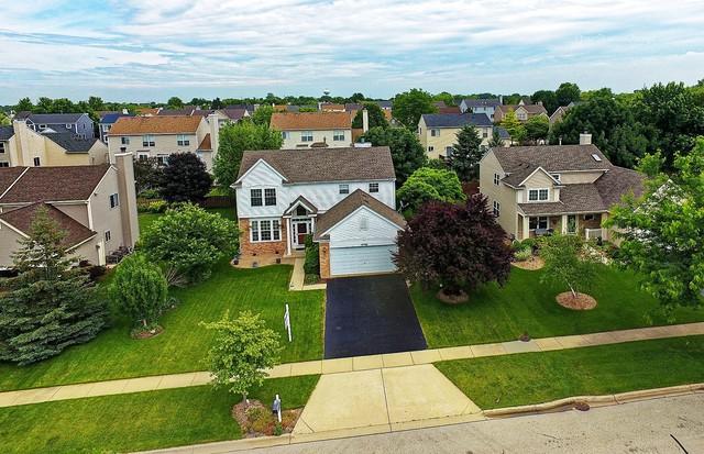 9788 Dalton Drive, Huntley, IL 60142 (MLS #09887855) :: Baz Realty Network   Keller Williams Preferred Realty
