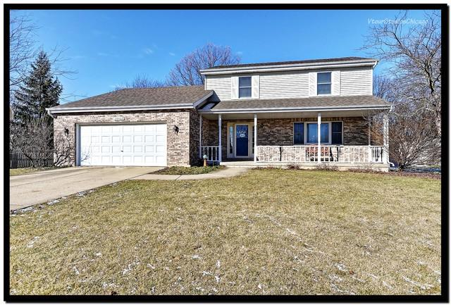 24462 S Egret Drive, Channahon, IL 60410 (MLS #09888151) :: Littlefield Group