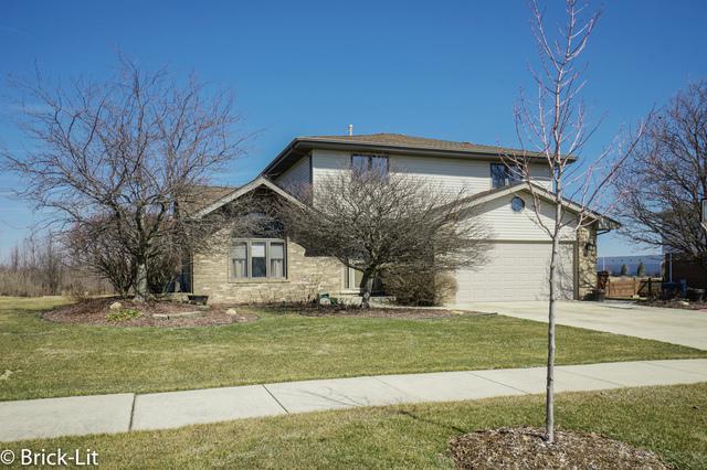 9220 Birch Avenue, Mokena, IL 60448 (MLS #09888476) :: Littlefield Group