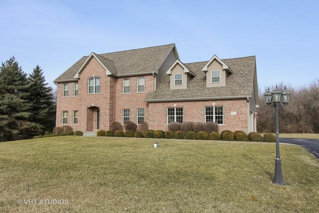 9515 Champion Court, Spring Grove, IL 60081 (MLS #09888757) :: Littlefield Group