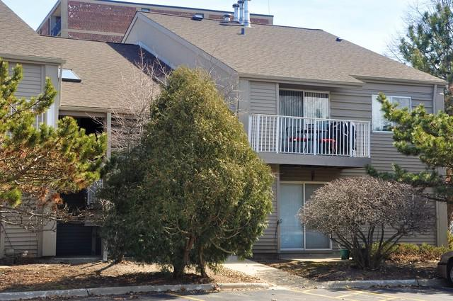46 N Park Avenue #8, Lombard, IL 60148 (MLS #09889350) :: Domain Realty