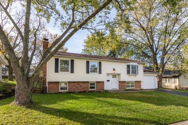 3123 Andrea Court, Woodridge, IL 60517 (MLS #09889352) :: The Jacobs Group