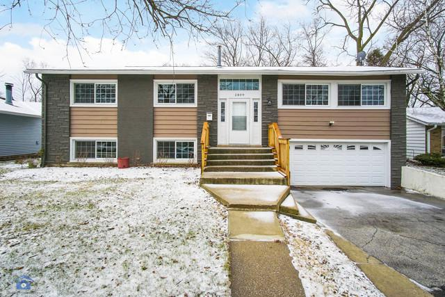 2809 Knollwood Place, Hazel Crest, IL 60429 (MLS #09889525) :: Domain Realty