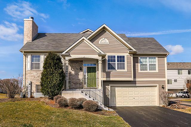 24600 John Adams Drive, Plainfield, IL 60544 (MLS #09889618) :: Domain Realty