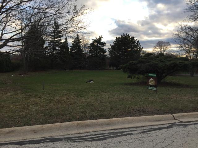 46 Kingston Drive, Oak Brook, IL 60523 (MLS #09890034) :: Domain Realty