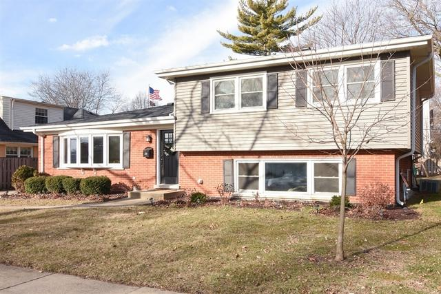 206 N Douglas Avenue, Arlington Heights, IL 60004 (MLS #09890135) :: The Jacobs Group