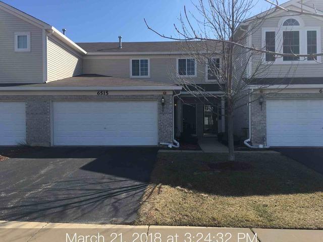 6515 Blue Sky Lane, Matteson, IL 60443 (MLS #09890326) :: Domain Realty