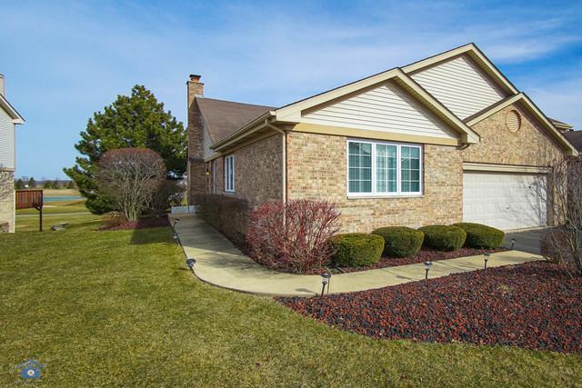 75 Iliad Drive, Tinley Park, IL 60477 (MLS #09890341) :: Littlefield Group