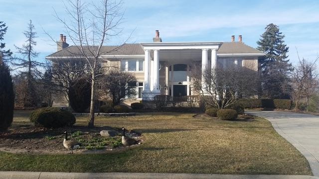 17 Natoma Drive, Oak Brook, IL 60523 (MLS #09890447) :: Domain Realty