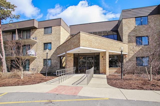 5600 Astor Lane #113, Rolling Meadows, IL 60008 (MLS #09890503) :: Domain Realty