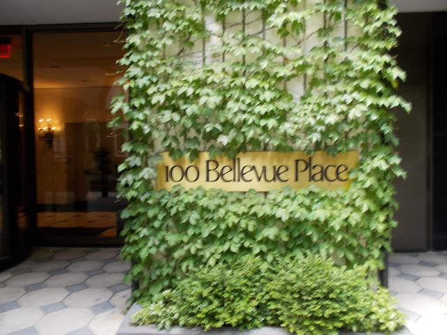 100 E Bellevue Place 12C, Chicago, IL 60611 (MLS #09890569) :: Property Consultants Realty