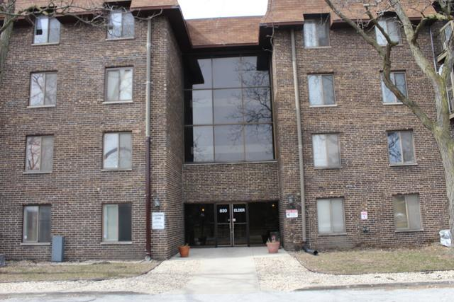 820 Elder Road C408, Homewood, IL 60430 (MLS #09890675) :: Littlefield Group