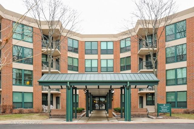 1225 Luther Lane 447-D, Arlington Heights, IL 60004 (MLS #09890955) :: Littlefield Group