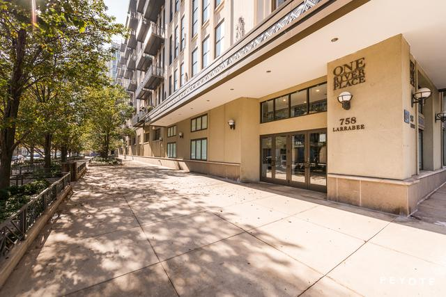 758 N Larrabee Street #420, Chicago, IL 60654 (MLS #09891542) :: Property Consultants Realty