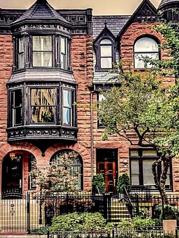 47 E Division Street, Chicago, IL 60610 (MLS #09891677) :: Property Consultants Realty
