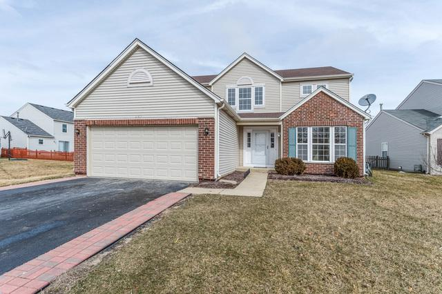 247 Lilac Drive, Romeoville, IL 60446 (MLS #09891745) :: Domain Realty