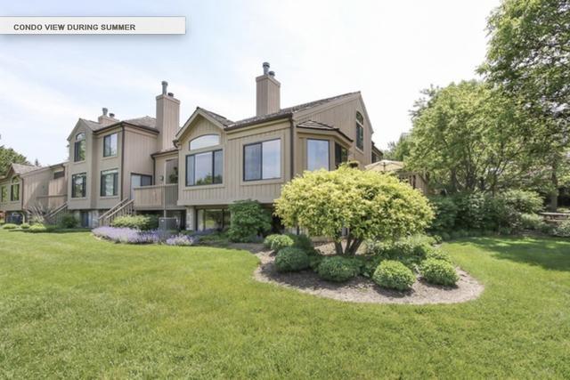 7 Shoreline Road #1208, Lake Barrington, IL 60010 (MLS #09891816) :: The Jacobs Group