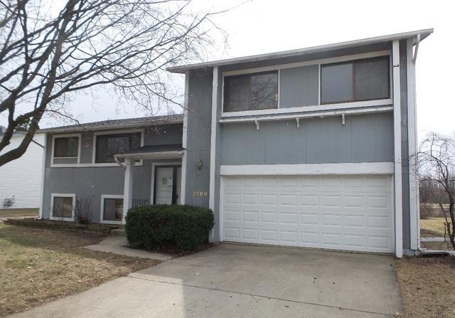 2709 Wild Plum Street, Woodridge, IL 60517 (MLS #09891903) :: Domain Realty