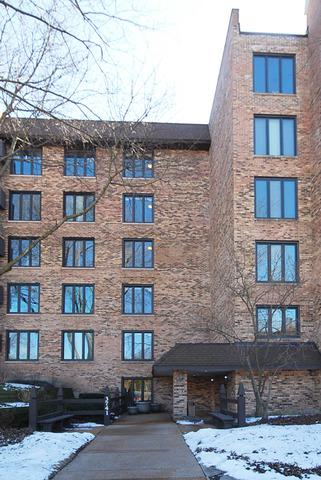 3741 Mission Hills Road #507, Northbrook, IL 60062 (MLS #09892433) :: Domain Realty