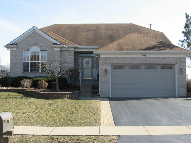 208 S Palmer Drive, Bolingbrook, IL 60490 (MLS #09892553) :: The Jacobs Group