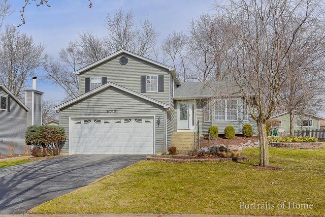 6616 Oak Tree Trail, Woodridge, IL 60517 (MLS #09892703) :: Domain Realty