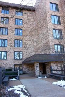 3741 Mission Hills Road #311, Northbrook, IL 60062 (MLS #09892895) :: Domain Realty