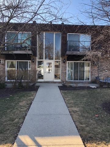 715 Grove Drive #106, Buffalo Grove, IL 60089 (MLS #09893121) :: Littlefield Group
