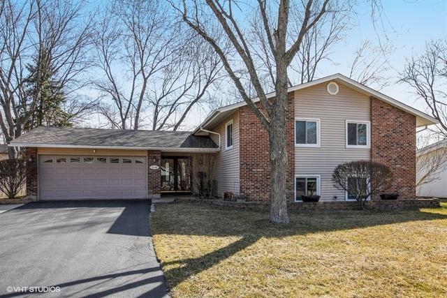 6109 Tyler Drive, Woodridge, IL 60517 (MLS #09893449) :: Domain Realty