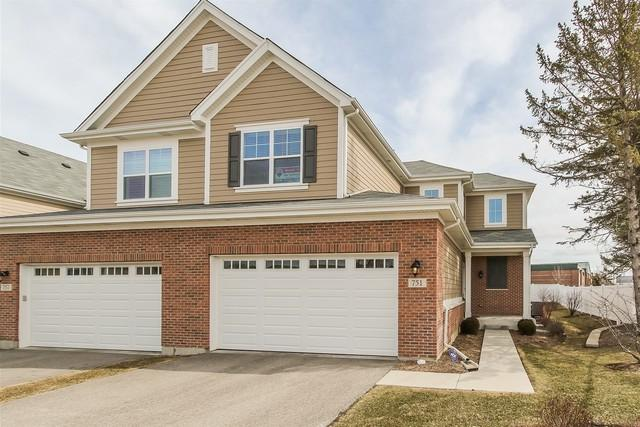 751 N Winchester Drive, Palatine, IL 60067 (MLS #09893769) :: The Jacobs Group