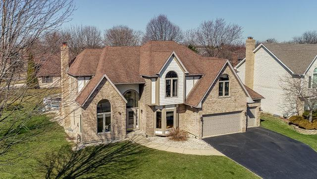 1703 Atwood Circle, Naperville, IL 60565 (MLS #09893913) :: The Jacobs Group