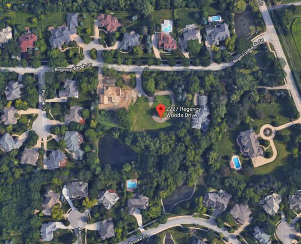 2227 Regency Woods Drive, Lisle, IL 60532 (MLS #09894224) :: Littlefield Group