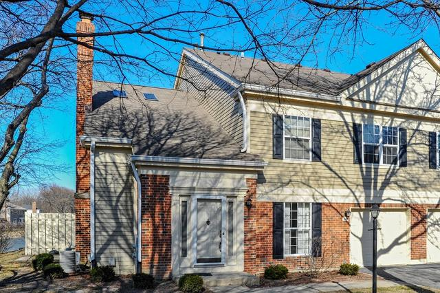 110 Bent Creek Court #1, Palatine, IL 60067 (MLS #09894259) :: The Jacobs Group