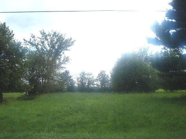 Lot 966 Lake Wildwood Drive, Varna, IL 61375 (MLS #09895093) :: The Jacobs Group