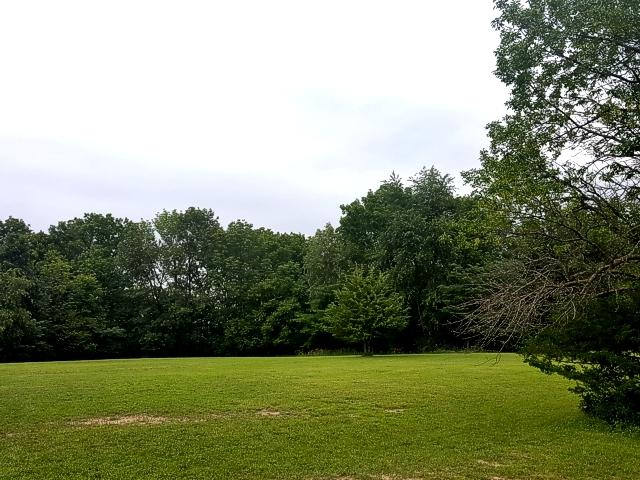Lot 1078 Deer Valley Drive, Varna, IL 61375 (MLS #09895099) :: The Jacobs Group