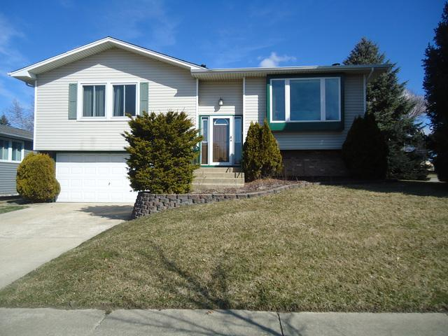 740 Case Drive, Roselle, IL 60172 (MLS #09895115) :: The Jacobs Group