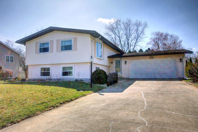 111 E Briarcliff Drive, ST. JOSEPH, IL 61873 (MLS #09895540) :: Littlefield Group