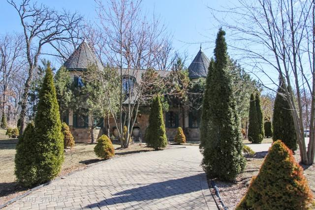 22290 W Maple Court, Kildeer, IL 60047 (MLS #09898959) :: Helen Oliveri Real Estate