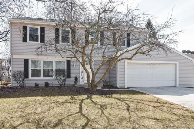 9 Bedford Drive, Vernon Hills, IL 60061 (MLS #09899771) :: The Jacobs Group