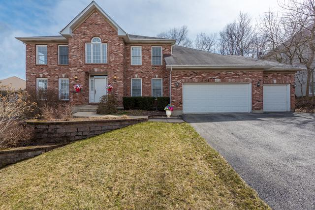 432 Delaware Circle, Bolingbrook, IL 60440 (MLS #09900327) :: The Jacobs Group