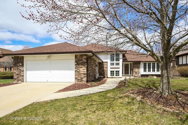 8238 Bromley Street, Orland Park, IL 60462 (MLS #09901560) :: Lewke Partners