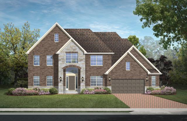 13068 Dunmoor Drive, Lemont, IL 60439 (MLS #09901937) :: Helen Oliveri Real Estate